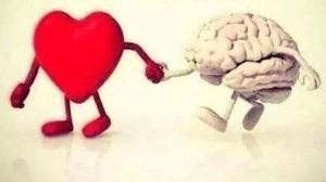 cuore cervello